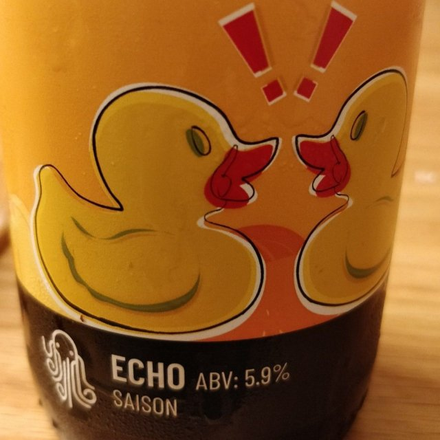 Time & Tide: Echo Saison 5.9% £5.00 375ml
